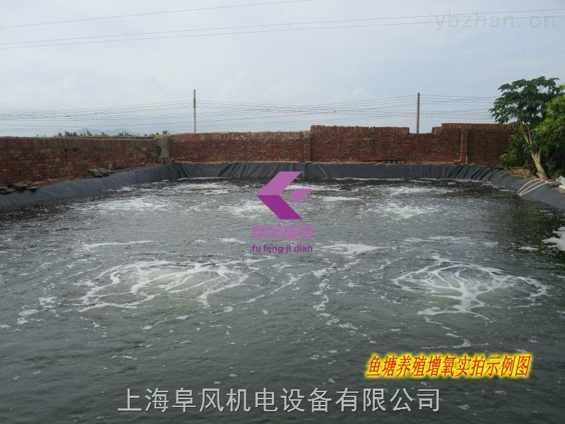 水产养殖池塘增氧气泵