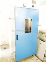 SC/QLH-100热空气老化试验箱