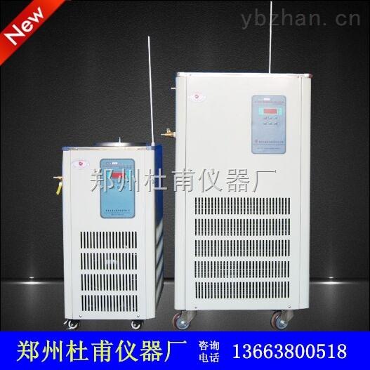 欢迎选购DLSB-10L/-30℃低温冷却液循环泵