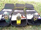 美国华瑞手持式的PGM-7300环境VOC浓度检测仪器
