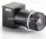 加拿大DALSA工业相机