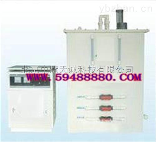 电解法二氧化氯发生器(300g/h)  型号:EHU1/LR-300