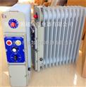BDR-2/13YR防爆加热器