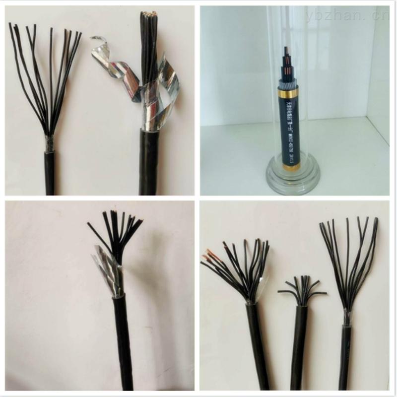 RS485鎧裝通訊電纜