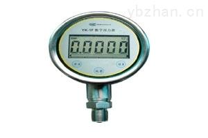 ACD-1F峰值数字压力表
