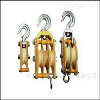 承装修饰工具设备-20~50kN起重滑车