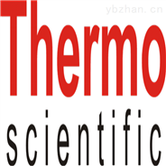 Thermo 密度变送器