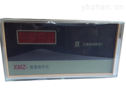 智能數字顯示器   XMZA-2002