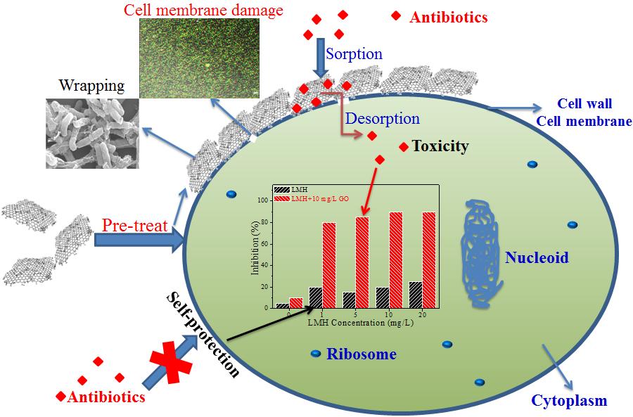 氧化石墨烯纳米材料自然水环境中迁移行为研究获进展
