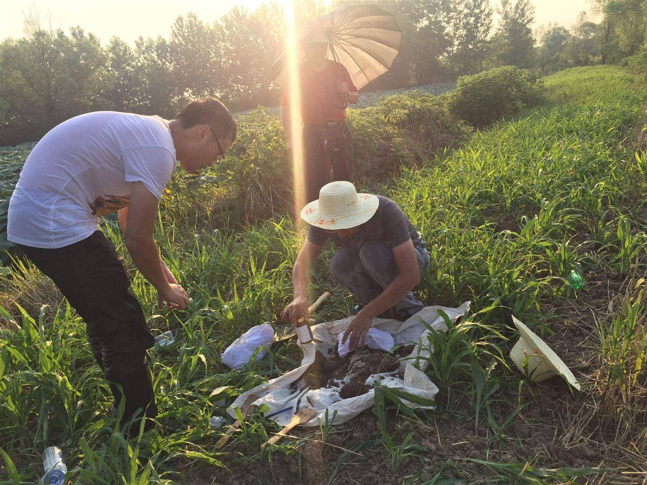 2020年山东淄博将实现土壤环境质量监测点位全覆盖