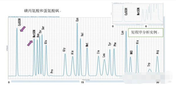 日立推出新型氨基酸分析儀LA8080