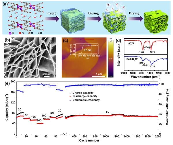 深圳先進院開發出基于有機負極的鉀基雙離子電池