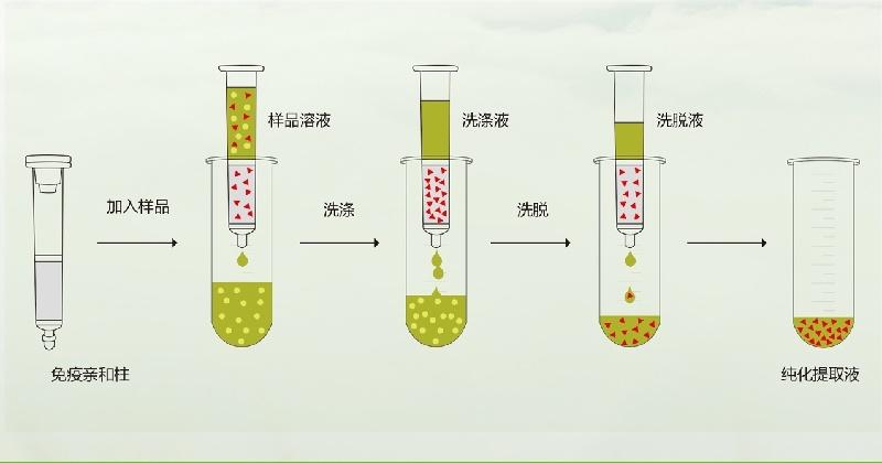 免疫亲和柱操作流程