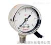 GE20SL电接点压力表