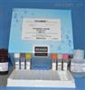 小鼠血糖ELISA检测试剂盒