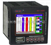 SH300A厂家专业生产泰州双华仪表万能输入彩色无纸记录仪   SH300A