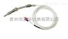 WRET-01厂家专业生产泰州双华仪表WRET-01压簧式固定热电阻