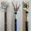 ZR-IA-DJYVP5*2*1.5计算机电缆