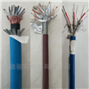 ZR-IA-DJYVP7*2*1.5計算機電纜
