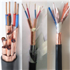ZR-DJFP2FP2阻燃计算机电缆
