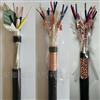 供应DJYVP4*2*1.0计算机电缆